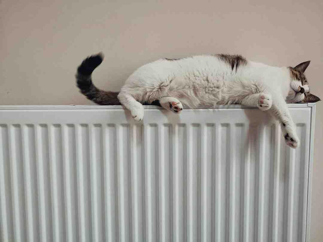 Quel type de radiateur pour une entrée ?
